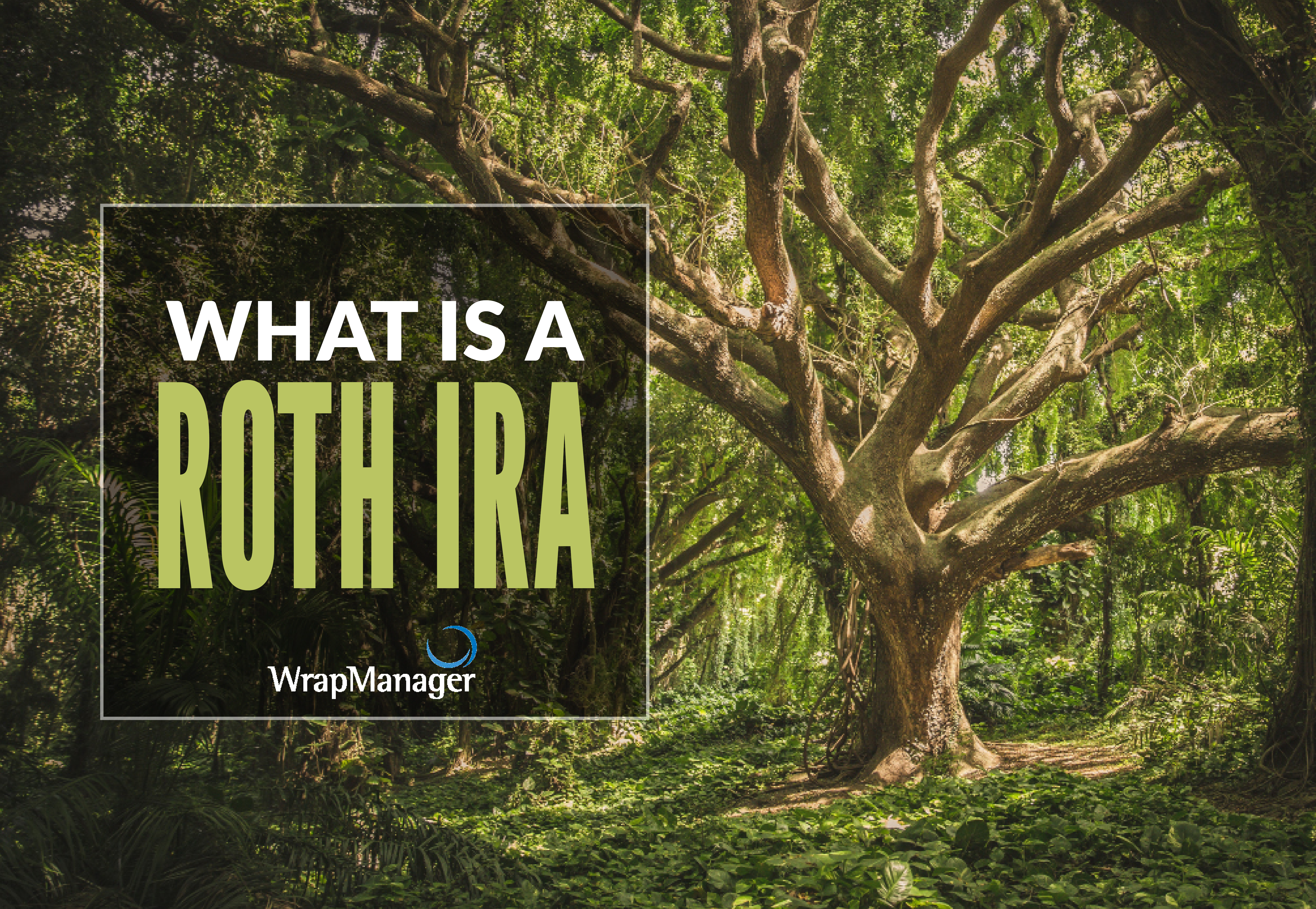 what is a roth ira.png